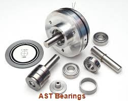 AST AST090 21060 plain bearings