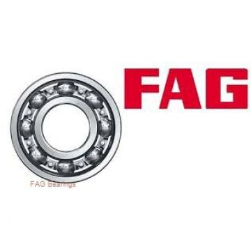 FAG 713678190/713611430 wheel bearings